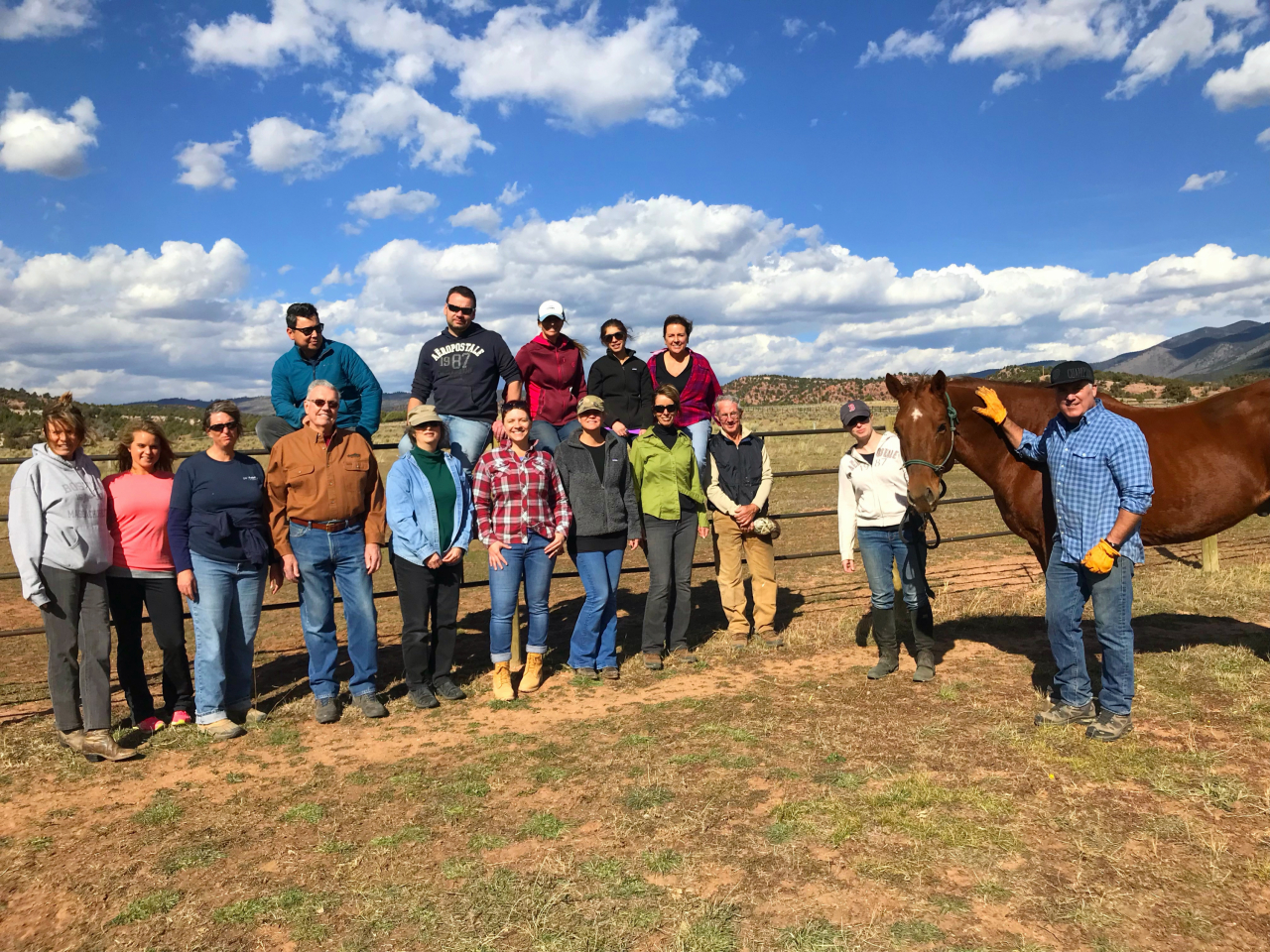 Pictured: LIV Sotheby's International Realty brokers and staff give back at Mountain Valley Horse Rescue.