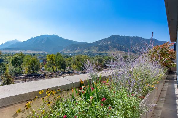1155 Canyon Boulevard #406 View