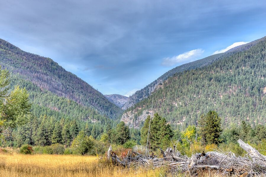 Get property now in Forest Hills Montana