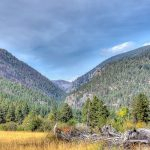 Get property now in Forest Hills Montana - Western Montana Living