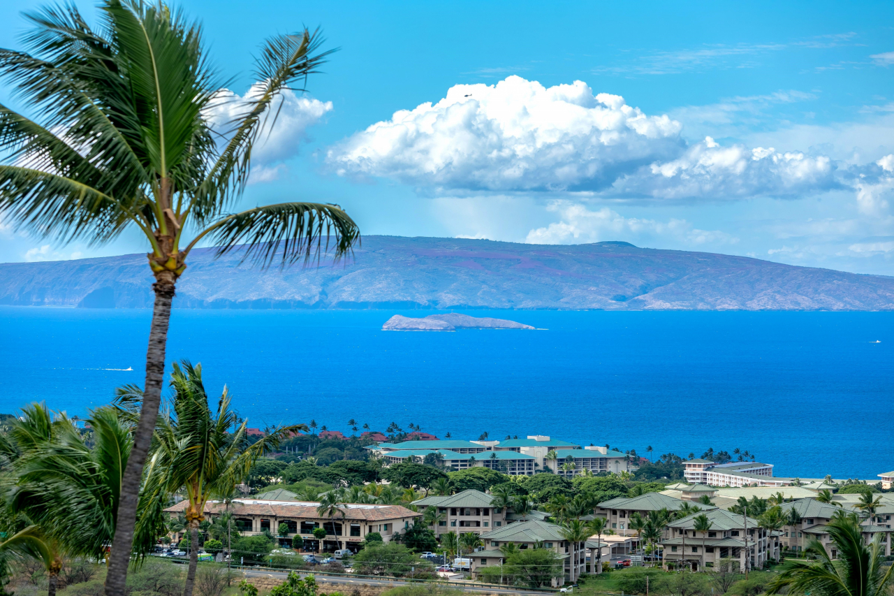 3523 Malina Place - Ocean View Maui