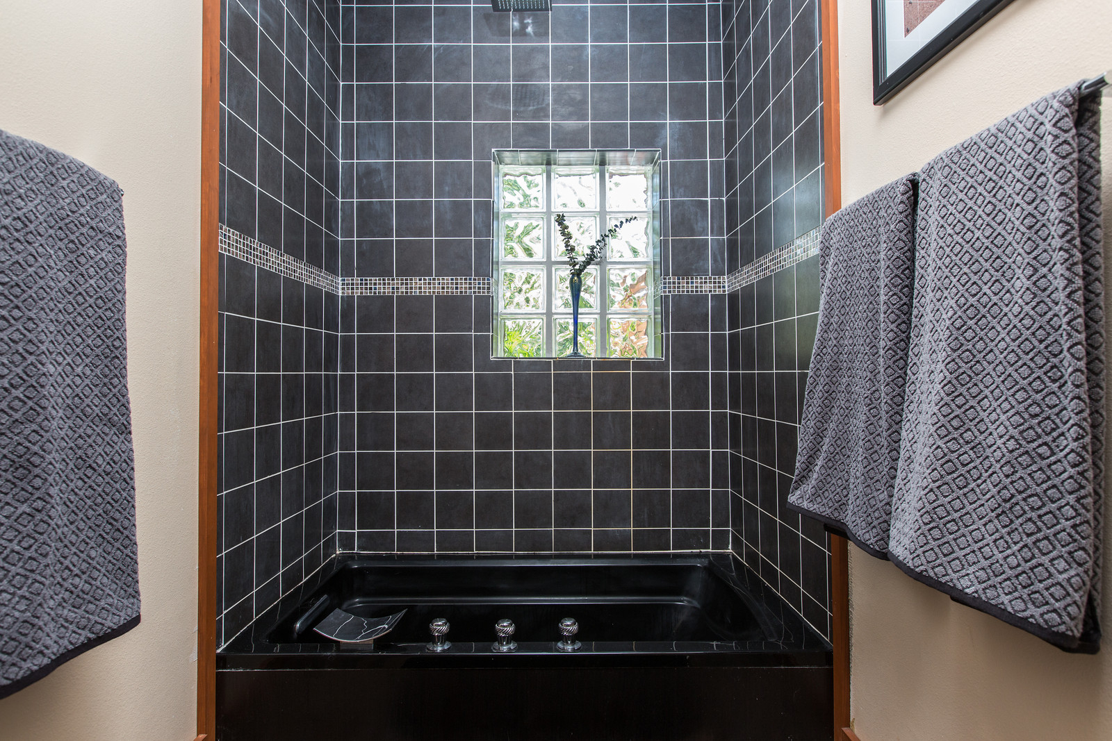 "<span class=""caption-true"">Master tub and shower</span>"