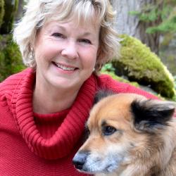 Susan de Stein