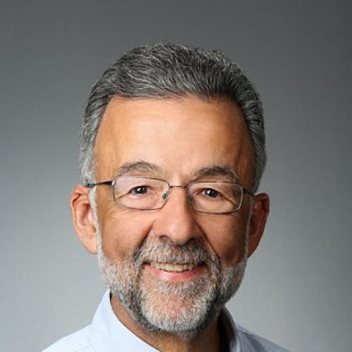 Mike Gambini